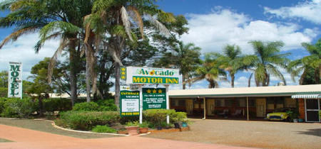 Avocado Motor Inn - Tweed Heads Accommodation
