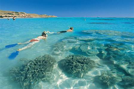 Ningaloo Reef Resort - Tweed Heads Accommodation