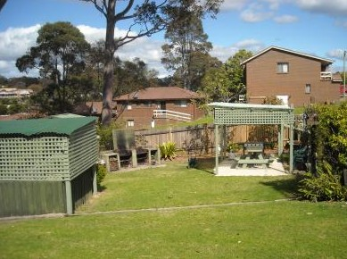 The Tree Motel - Tweed Heads Accommodation