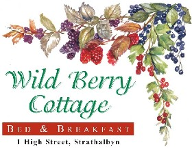 Wild Berry Cottage - Tweed Heads Accommodation