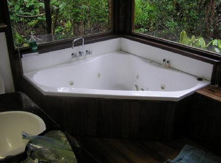 The Canopy Rainforest Tree Houses and Wildlife Sanctuary - Tweed Heads Accommodation