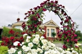 Golden Embers Apartments and B and B - Tweed Heads Accommodation