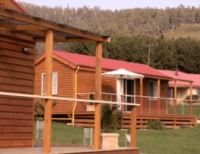 Maydena Country Cabins Accommodation  Alpaca Stud - Tweed Heads Accommodation