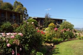 Mole Creek Holiday Village - Tweed Heads Accommodation