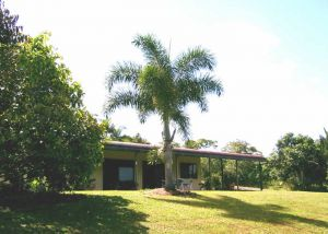 Daintree Mountain View Retreat and Vanilla Beans - Tweed Heads Accommodation