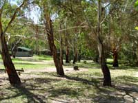 Woods Reserve - Tweed Heads Accommodation