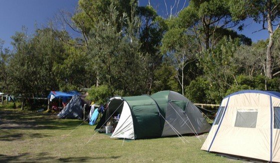 Booderee National Park: Cave Beach Camping Area - Tweed Heads Accommodation