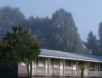 Bondi Forest Lodge - Tweed Heads Accommodation