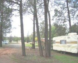 The Kelpie Caravan Park - Tweed Heads Accommodation