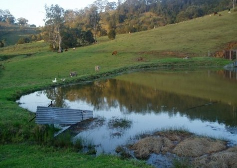 Barkeldine Farm Country Retreat - Tweed Heads Accommodation