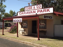 Cobb  Co Caravan Park - Tweed Heads Accommodation