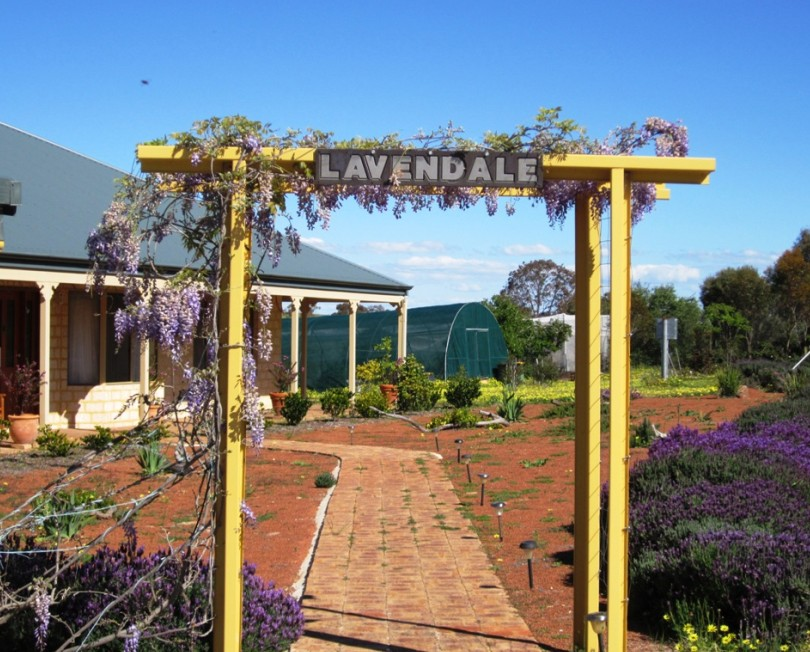 Lavendale Farmstay and Cottages - Tweed Heads Accommodation