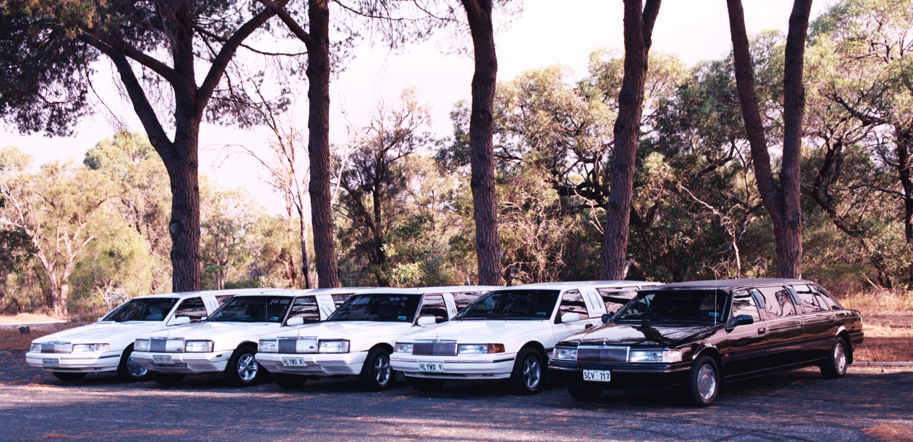 Hollywood VIP Limousines - Tweed Heads Accommodation