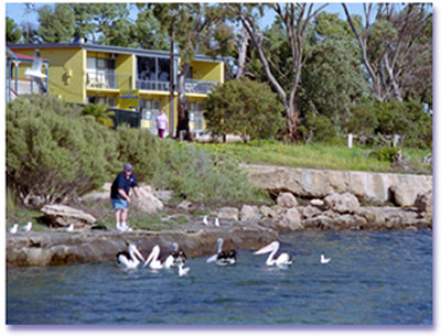 Almonta Holiday Apartments - Tweed Heads Accommodation