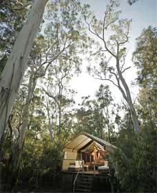Paperbark Camp - Tweed Heads Accommodation