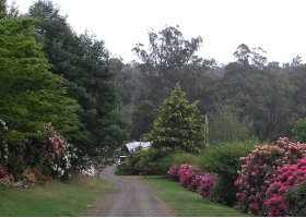 Mountain Rivers Lodge - Tweed Heads Accommodation