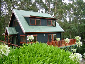 Tree Tops Cascades - Tweed Heads Accommodation