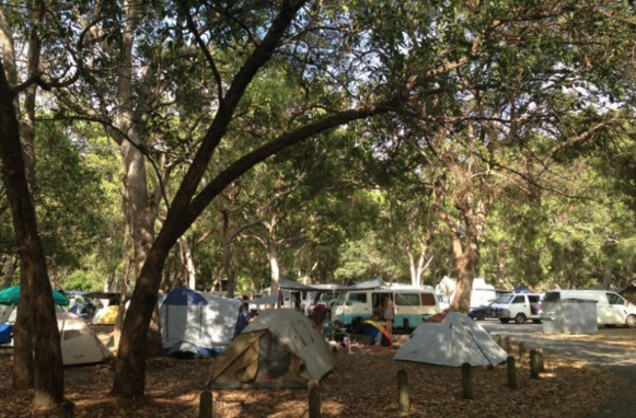 Adder Rock Camping Ground - Tweed Heads Accommodation