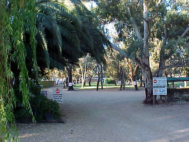 Kingston-On-Murray Caravan Park - Tweed Heads Accommodation