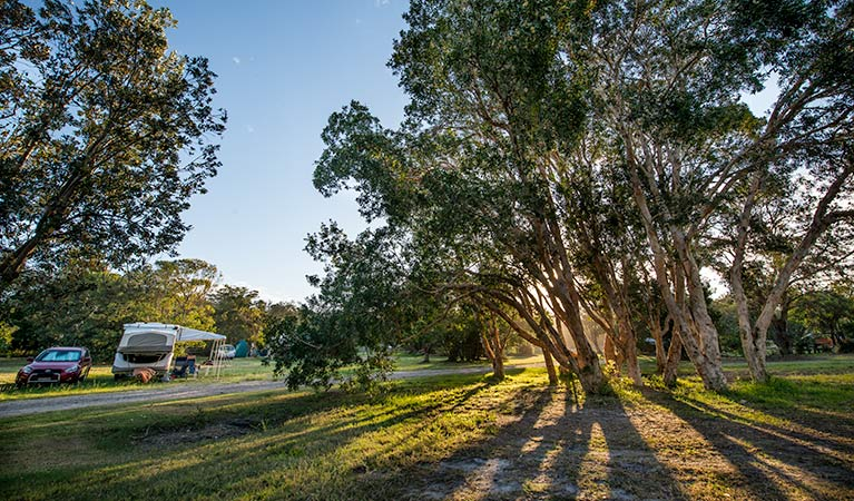 Delicate campground - Tweed Heads Accommodation