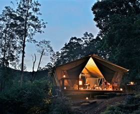 nightfall wilderness camp - Tweed Heads Accommodation