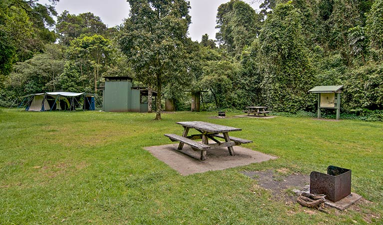 Forest Tops campground - Tweed Heads Accommodation