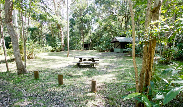 Iron Pot Creek campground - Tweed Heads Accommodation