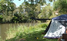 Williams River Holiday Park - Tweed Heads Accommodation