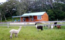 Moorallie Cottage Farm Stay - Tweed Heads Accommodation