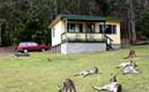 Port Pitstop Cottage - Tweed Heads Accommodation