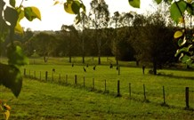 Stone Cottage Mittagong - Tweed Heads Accommodation