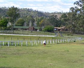 Kellarni Downs Farmstay-Scenic Rim - Tweed Heads Accommodation