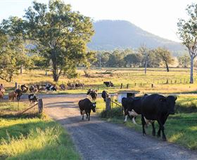 Tommerups Dairy Farmstay - Tweed Heads Accommodation