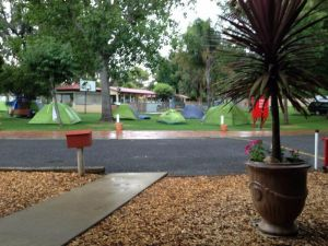 Young Caravan Tourist Park - Tweed Heads Accommodation