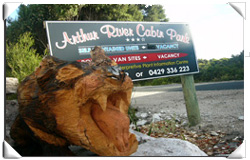 Arthur River Cabin Park - Tweed Heads Accommodation