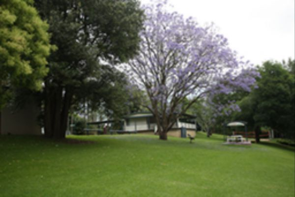 Hawkesbury Riverside Tourist Park - Tweed Heads Accommodation