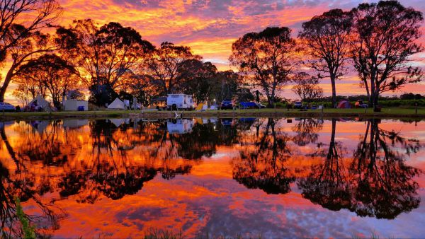 Coonawarra Bush Holiday Park - Tweed Heads Accommodation