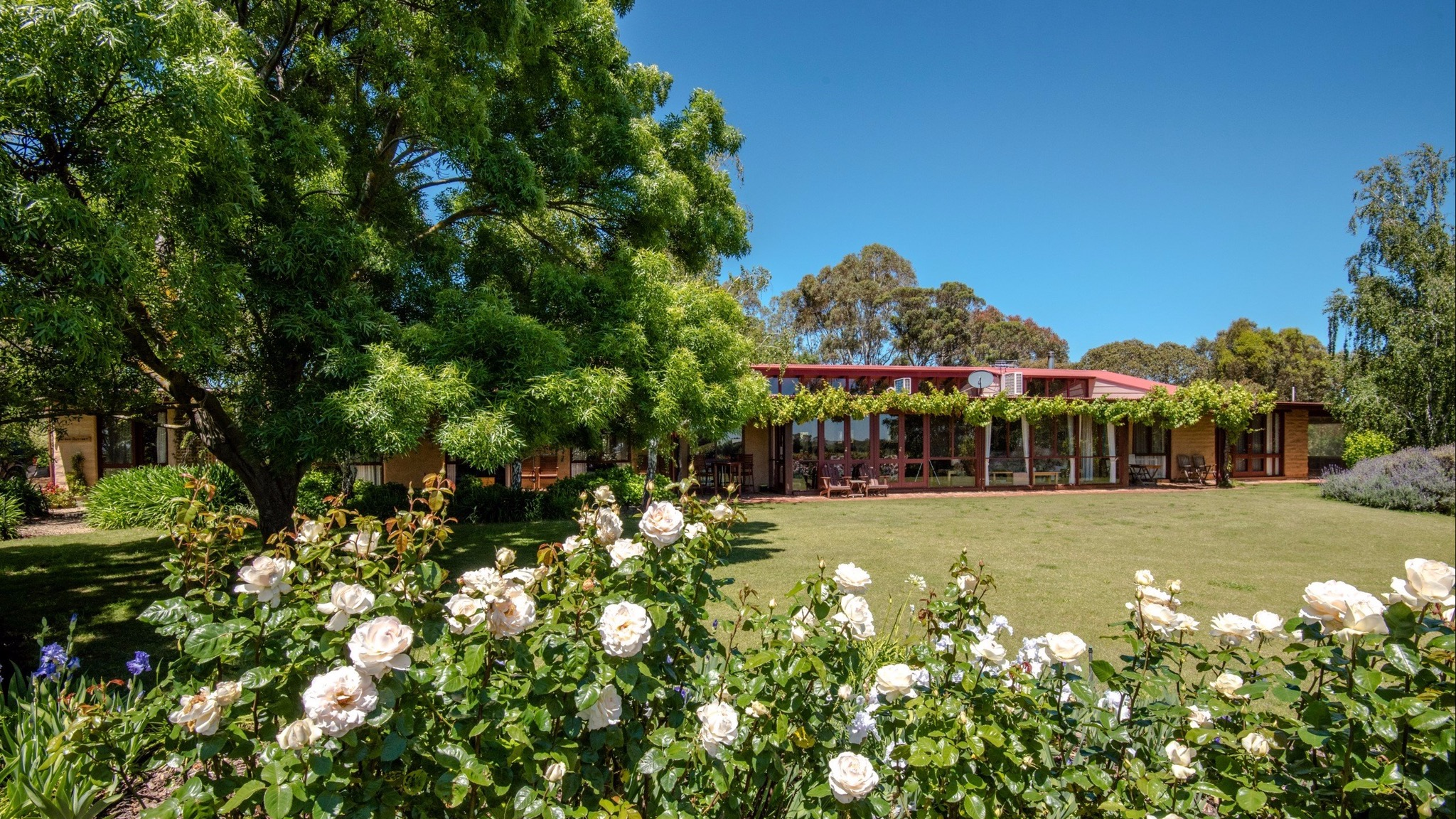 Mulberry Lodge Country Retreat - Tweed Heads Accommodation