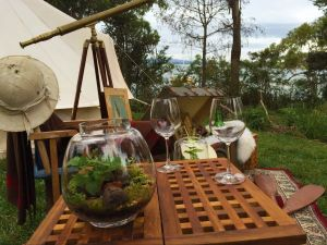 Wingtons Glamping Clarence Point - Tweed Heads Accommodation