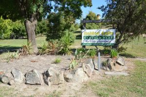 Adelong Golden Gully Caravan Park - Tweed Heads Accommodation