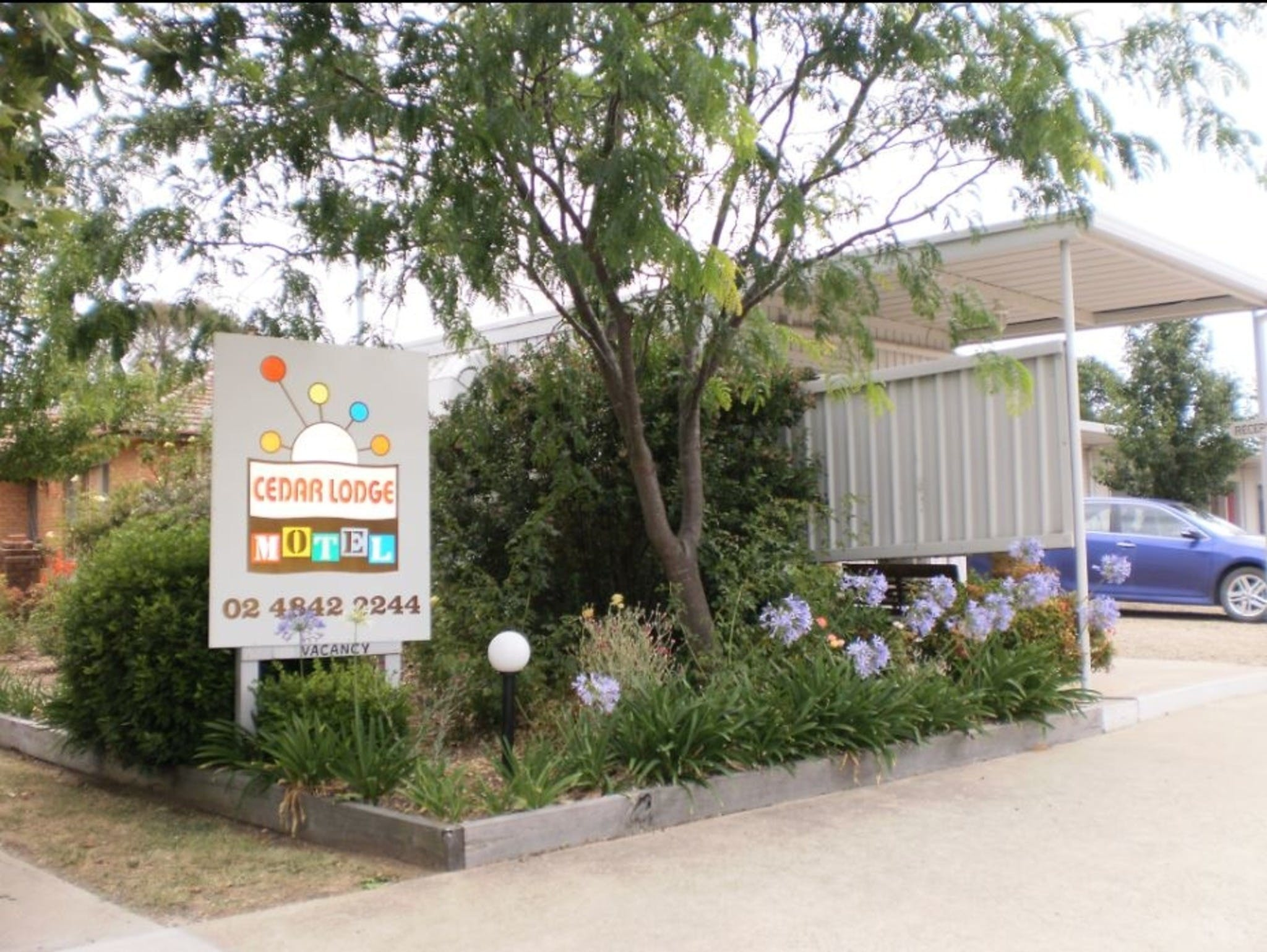 Cedar Lodge Motel - Tweed Heads Accommodation