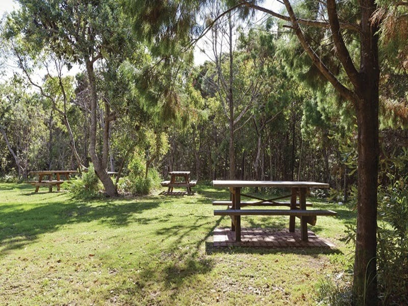 Illaroo group camping area - Tweed Heads Accommodation