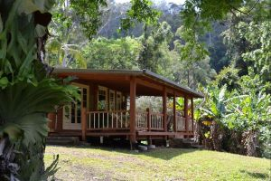 Black Sheep Farm Guest House - Tweed Heads Accommodation