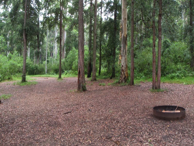 Murphys Glen campground - Tweed Heads Accommodation