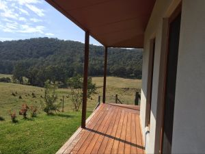 Highland Cattle Farm Stay - Tweed Heads Accommodation