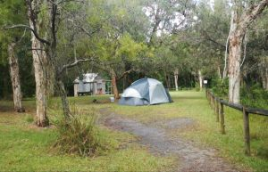 Kylies Hut walk-in campground - Tweed Heads Accommodation