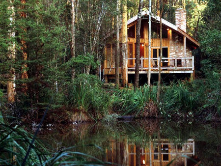Woodlands Rainforest Retreat - Tweed Heads Accommodation