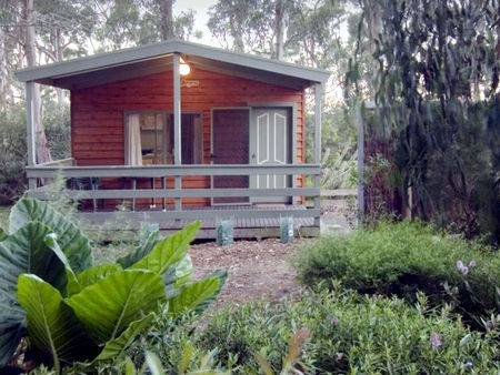 A Maze N Things Holiday Park - Tweed Heads Accommodation