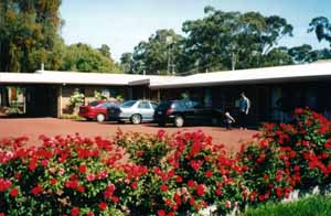 Whispering Gums Motel - Tweed Heads Accommodation