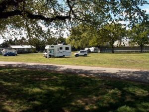 Sale Showground Caravan and Motorhome Park - Tweed Heads Accommodation